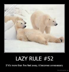 LAZY RULE #52 - If it's more than five feet away, it becomes unnecessary