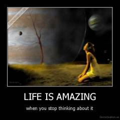 LIFE IS AMAZING - when you stop thinking about it