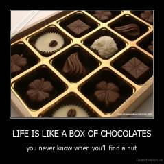 sc 1 st  Demotivation.us & LIFE IS LIKE A BOX OF CHOCOLATES | Demotivation.us Aboutintivar.Com