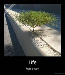 Life - finds a way