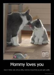 Mommy loves you - Even if other cats call you fatty, mommy knows that you are just cuddly