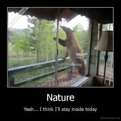 Nature - Yeah... I think I'll stay inside today