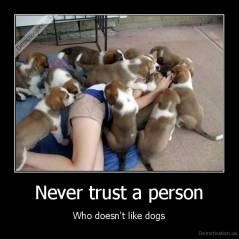 Never trust a person - Who doesn't like dogs