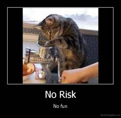 No Risk - No fun