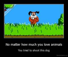 No matter how much you love animals - You tried to shoot this dog