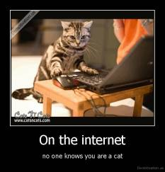On the internet - no one knows you are a cat
