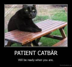 PATIENT CATBÄR - Will be ready when you are.
