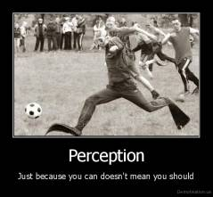 Perception - Just because you can doesn't mean you should