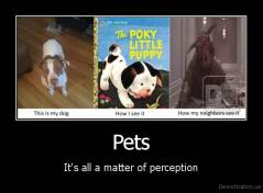 Pets - It's all a matter of perception