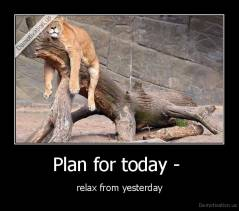 Plan for today -  - relax from yesterday