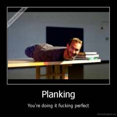 Planking - You're doing it fucking perfect