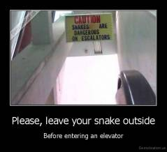 Please, leave your snake outside - Before entering an elevator