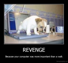 REVENGE - Because your computer was more important than a walk