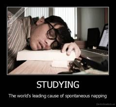 STUDYING - The world's leading cause of spontaneous napping