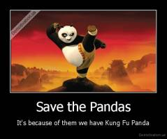 Save the Pandas - It's because of them we have Kung Fu Panda
