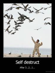 Self destruct - After 3...2...1...