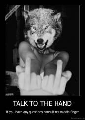 TALK TO THE HAND - If you have any questions consult my middle finger