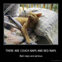 THERE ARE COUCH NAPS AND BED NAPS - Bed naps are serious