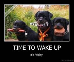 TIME TO WAKE UP - it's Friday!