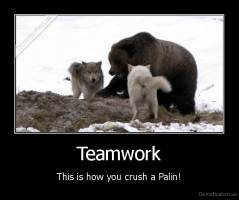Teamwork - This is how you crush a Palin!