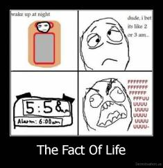 The Fact Of Life -