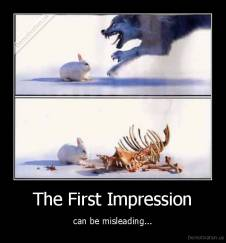 The First Impression - can be misleading...