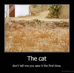 The cat - don't tell me you saw it the first time.