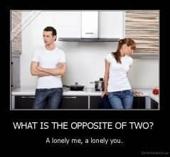 WHAT IS THE OPPOSITE OF TWO?  - A lonely me, a lonely you.
