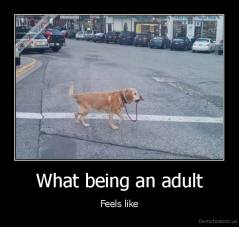 What being an adult - Feels like