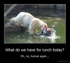 What do we have for lunch today? - Oh, no, human again...