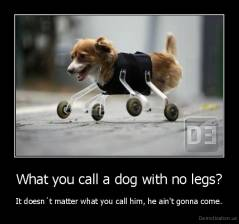 What you call a dog with no legs? - It doesn´t matter what you call him, he ain't gonna come.
