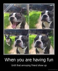 When you are having fun - Until that annoying friend show up