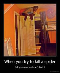 When you try to kill a spider - But you miss and can't find it