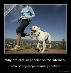Why are cats su popular on the internet? - Because dog people actually go outside