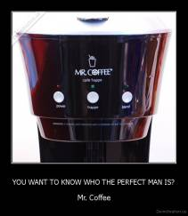 YOU WANT TO KNOW WHO THE PERFECT MAN IS? - Mr. Coffee