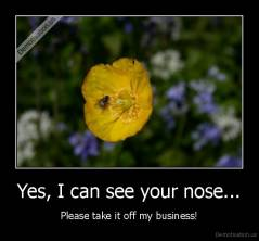 Yes, I can see your nose... - Please take it off my business!
