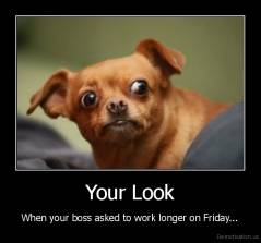 Your Look - When your boss asked to work longer on Friday...