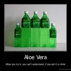 Aloe Vera - When you try it, you can't understand, if you eat it or drink