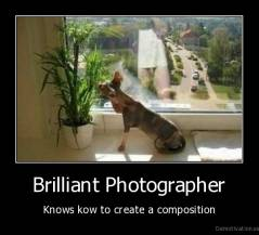 Brilliant Photographer - Knows kow to create a composition