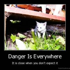 Danger Is Everywhere - It is close when you don't expect it