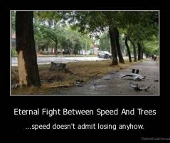 Eternal Fight Between Speed And Trees - ...speed doesn't admit losing anyhow.