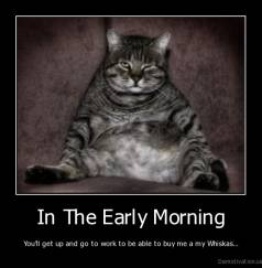 In The Early Morning - You'll get up and go to work to be able to buy me a my Whiskas...