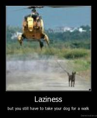 Laziness - but you still have to take your dog for a walk