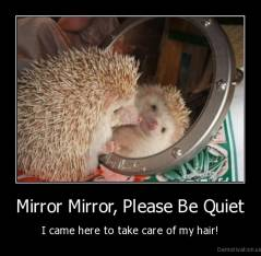 Mirror Mirror, Please Be Quiet - I came here to take care of my hair!