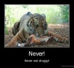 Never! - Never eat druggy!