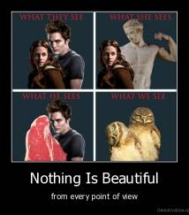 Nothing Is Beautiful - from every point of view