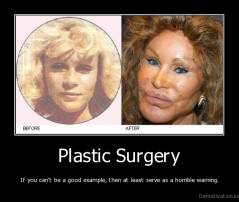 Plastic Surgery - If you can't be a good example, then at least serve as a horrible warning.