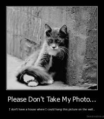 Please Don't Take My Photo... - I don't have a house where I could hang this picture on the wall...