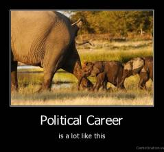 Political Career - is a lot like this
