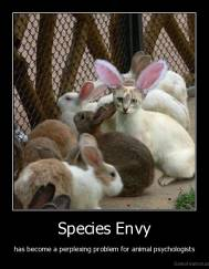 Species Envy - has become a perplexing problem for animal psychologists